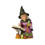 Mini Witch with Spell Book 4058851