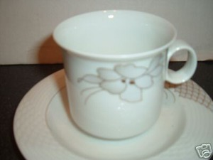 Hutschenreuther China Portofino Cup and Saucer