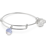 Cupcake Bangle Shiny Silver  Race To Erase MS