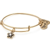 True Wish Charm Bangle Make A Wish Foundation Rafaelian Gold