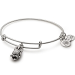 Ode to the Owl Charm Bangle Rafaelian Silver