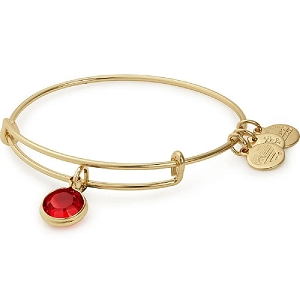 January Garnet Birth Month Bangle With Swarovski Crystal Gold