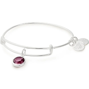 February Amethyst Birth Month Bangle With Swarovski Crystal Silver