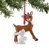 Rudolph and Bunny Ornament 4045007