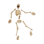 Village Halloween Boneyard Bag O Bones 4047604