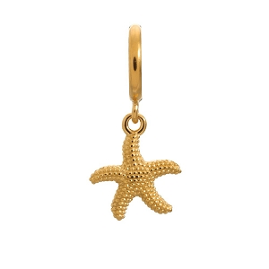 Starfish Charm Gold 53250