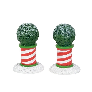 Peppermint Planters 6001713