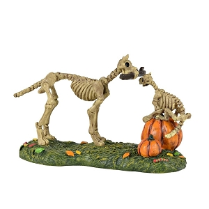 Haunted Pets At Play 6001748