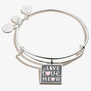 Live, Love, Meow Charm Bangle Shiny Silver
