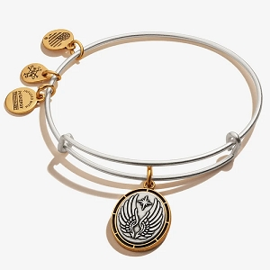 Guardian Angel Symbol Charm Bangle Two Tone