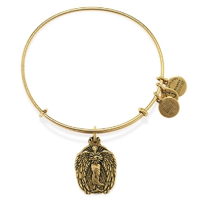 Guardian of Knowledge Charm Bangle Rafaelian Gold