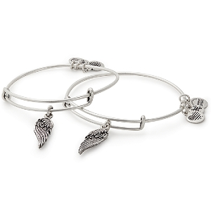 Wings Set of 2 Charm Bangles Rafaelian Silver