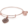 Compass Bangle Rafaelian Rose Gold