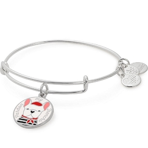 Pardon My Frenchie Color Infusion Charm Bangle Shiny Silver