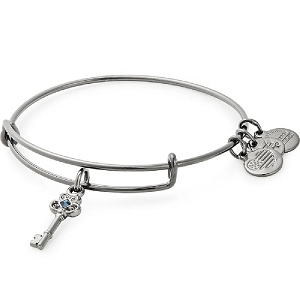 Key to Wisdom Charm Bangle Midnight Silver