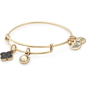 Wisdom Duo Charm Bangle Rafaelian Gold