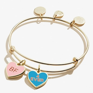 Color Infusion Best Friends Duo Charm Bangle Shiny Gold