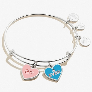 Color Infusion Best Friends Duo Charm Bangle Shiny Silver