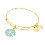 U.S. Coast Guard Charm Bangle Shiny Gold