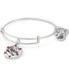 Team USA Skiing Charm Bangle Rafaelian Silver