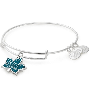 BeLeaf in Yourself Color Infusion Charm Bangle Silver