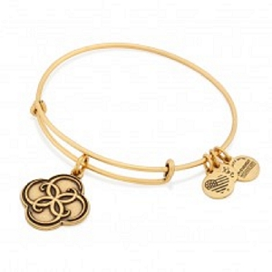Breath of Life Charm Bangle Rafaelian Gold