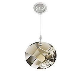 Swarovski 2010 SCS Members Only Ornament 1271363