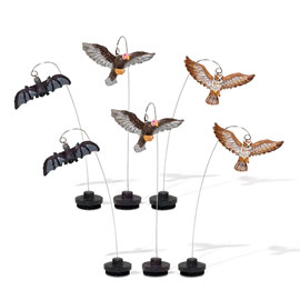 Creatures Of The Night 810638 Set of 6