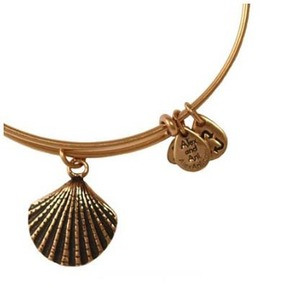 Sea Shell Bangle Rafaelian Gold