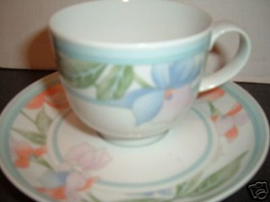 HUTSCHENREUTHER CHINA  Como  cup and saucer