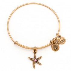Arms of Strength Charm Bangle Rafaelian Gold