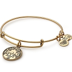 Power of Unity Charm Bangle Rafaelian Gold