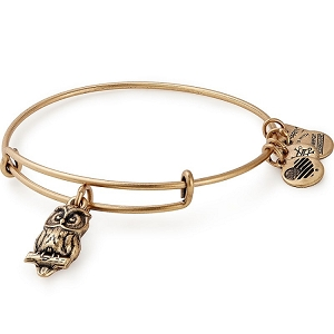 Owl Charm Bangle Rafaelian Gold