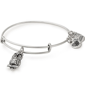 Owl Charm Bangle Rafaelian Silver
