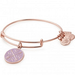 Arrows of Friendship Charm Bangle Rose Gold