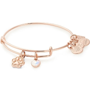 Paw Print Duo Charm Bangle Shiny Rose Gold Best Friends Animal Society