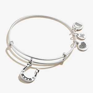 Crystal Horseshoe Charm Bangle Rafaelian Silver EAGALA