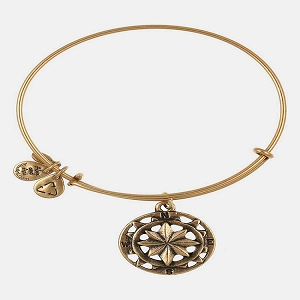 Compass Bangle Rafaelian Gold