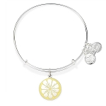 Zest for Life Charm Bangle Shiny Silver