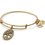 Friend Charm Bangle Rafaelian Gold