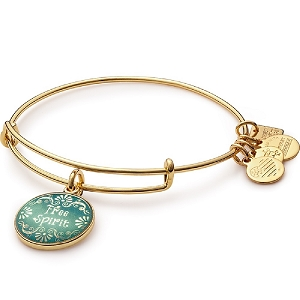 Free Spirit Charm Bangle Shiny Gold