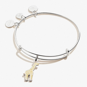 Giraffe Color Infusion Charm Bangle Shiny Silver