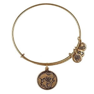 George Washington University Mascot Bangle Rafaelian Gold