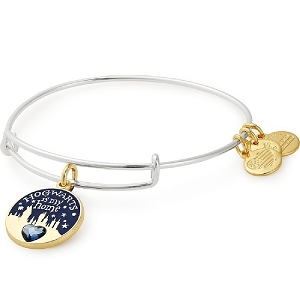 Harry Potter Hogwarts is My Home Two Tone Charm Bangle