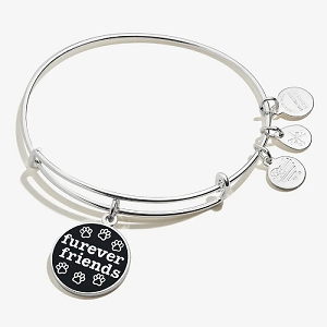 Furever Friends Paw Print Charm Bangle Shiny Silver