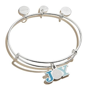 Joy Sand Dollar Color Infusion Bangle Shiny Silver
