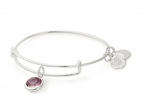 June Light Amethyst Birth Month Charm Bangle With Swarovski Crystal Silver