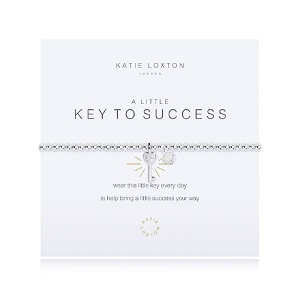 A Little Key To Success KLJ2072