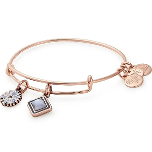 Life Duo Charm Bangle Rose Gold