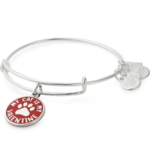 My Cat is My Valentine Bangle Shiny Silver Finish